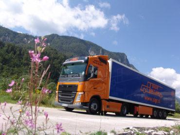 Sigr Bizjak tovorno vozilo/iz strani#2