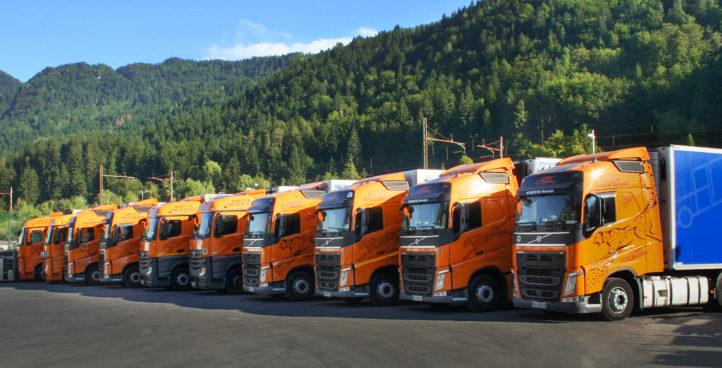 Tovorna vozila